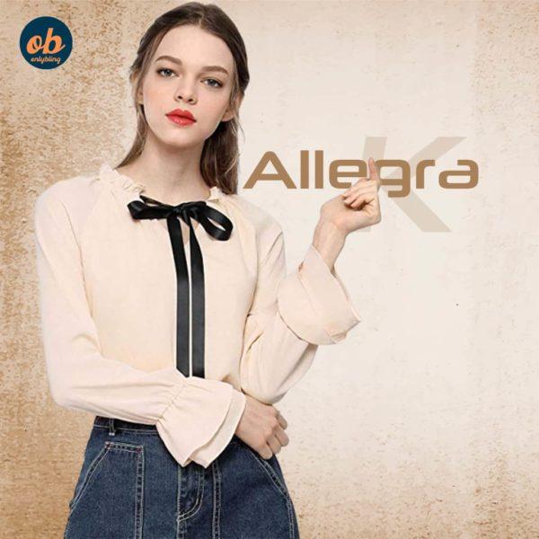 Allegra K Women's Tie Bow Neck Casual Long Sleeve Ruffled Trim Chiffon Blouse