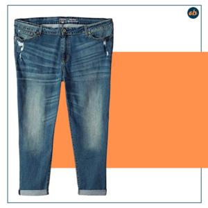 Signature Plus Size Mid Rise Jeans Denim
